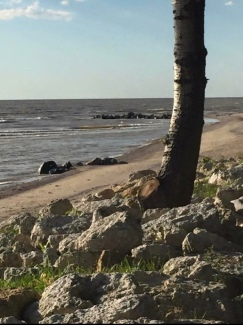 LAKE WINNIPEG BEACHES